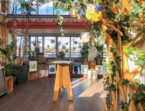 BAAS   Lidl Loves Vega   Event design & rental
